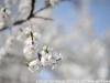 Пример фото на Nikon AF-S Nikkor 50mm 1:1.8G