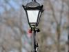Пример фото на Nikon 80-200 F 2.8 AF-S ED IF