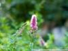 Фото на Nikon D1h