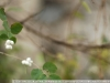 Пример фотографии на Nikon D2xs