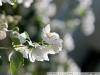 Photo on Nikon D80