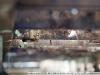 Фото на Pentacon 135 2.8 auto mc