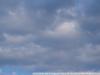 Фотография на объектив Quantaray 55-200 mm F4-5.6 Macro
