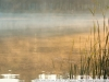 Пример фото на Fujifilm FinePix S5 Pro