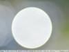sigma-70-300-4-5-6-d-dl-macro-super-lens-19