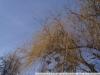 Примеры фотографий на Sony DT 3.5-5.6 18-55 SAM