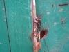 Sample photo on Carl Zeiss Jena Tessar 4,5 40 mm T