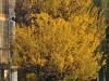 tamron-28-300-pzd-vc-di-a010n-image-7