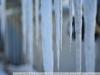 Пример фото на Carl Zeiss Jena DDR Tessar 2.8 50 zebra