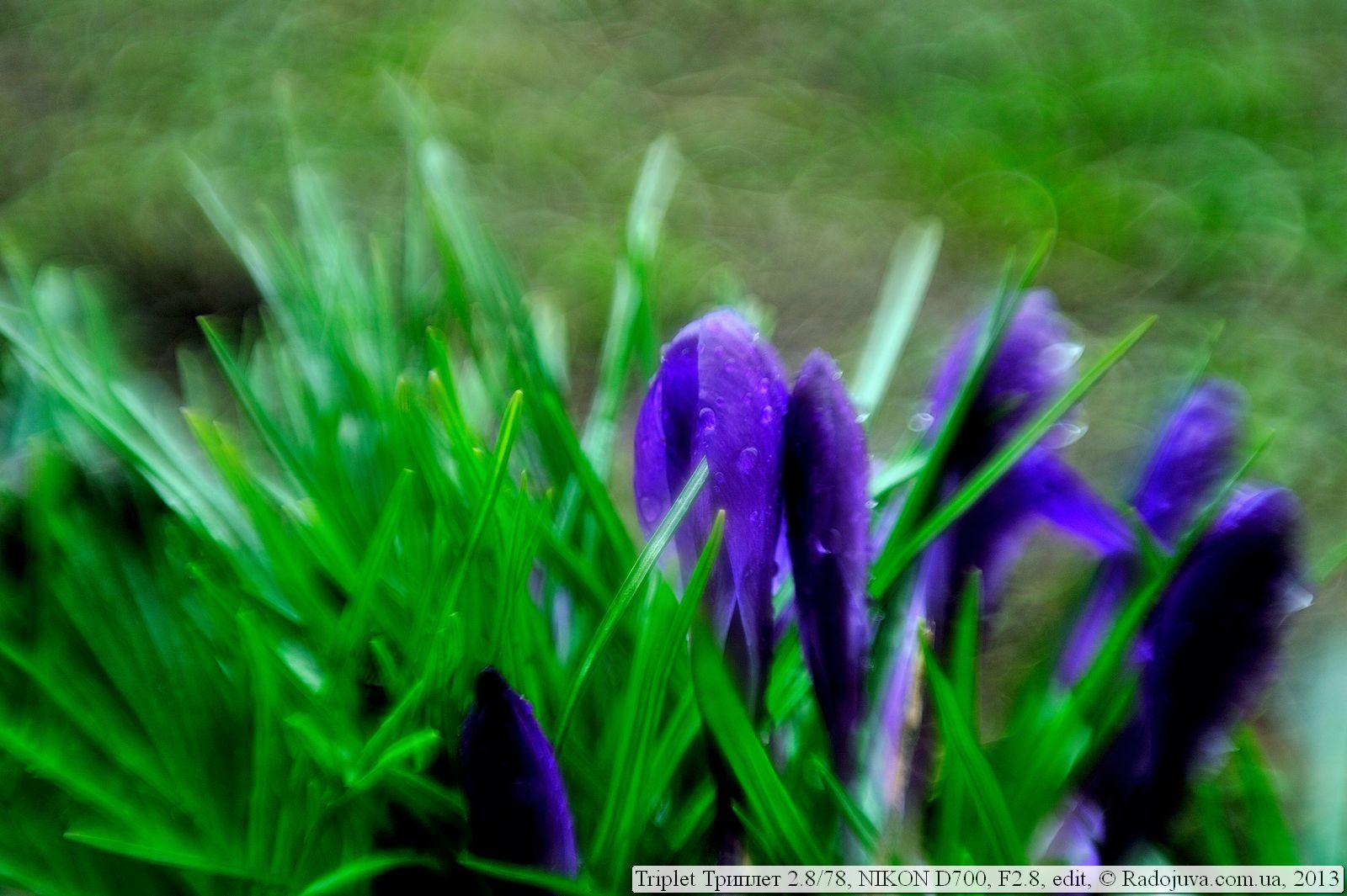 Добавить эффекты для фото или картинки онлайн  IMG online