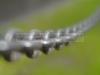 dsc_5446-volna-8n-52mm-f-1-2
