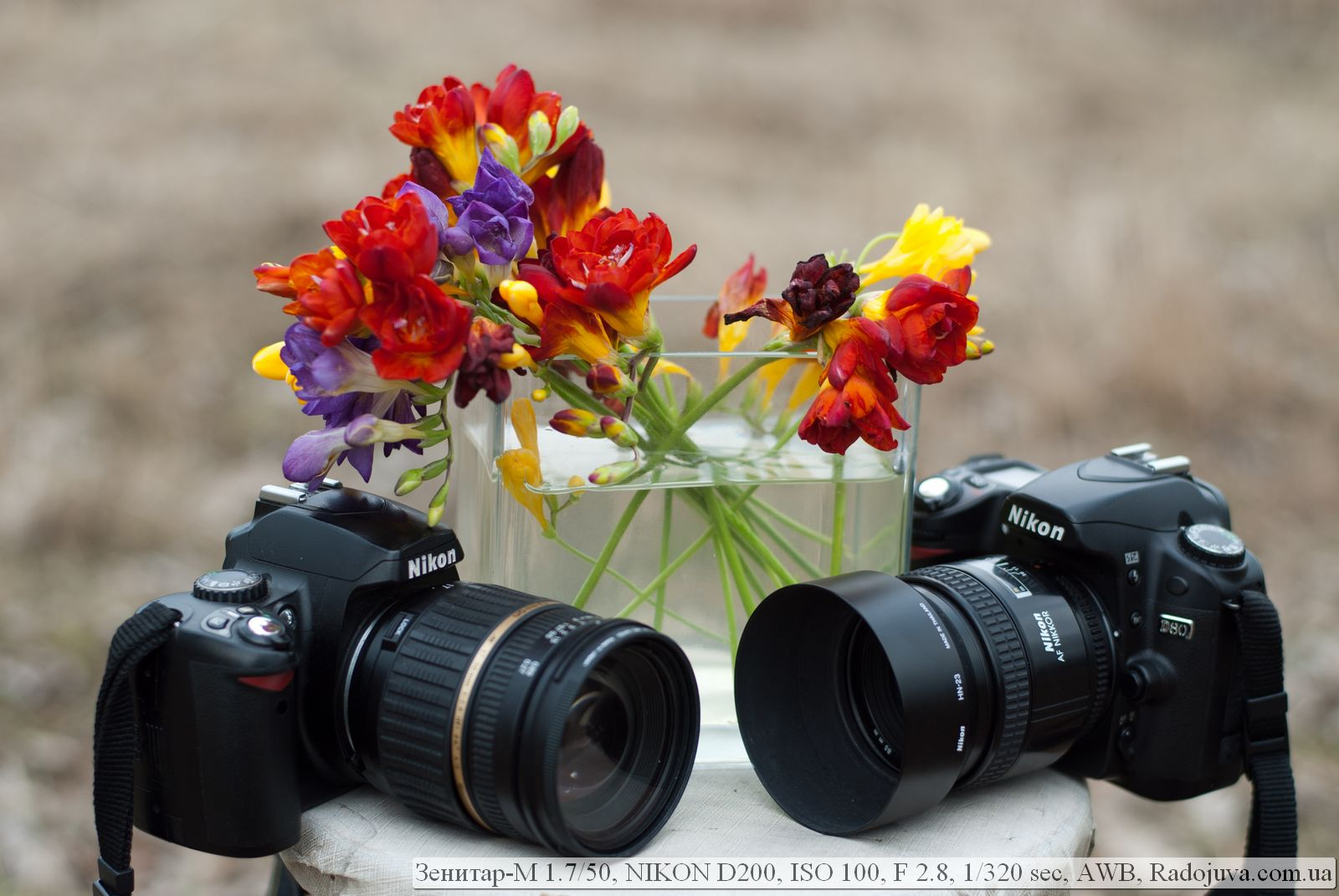 глотки всегда примеры фотографий на разные фотоаппараты сейчас